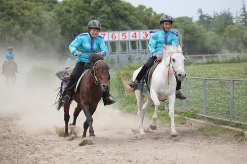 骑者善坠的动物